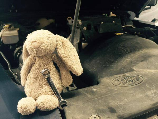 Bunny's story: he services a car